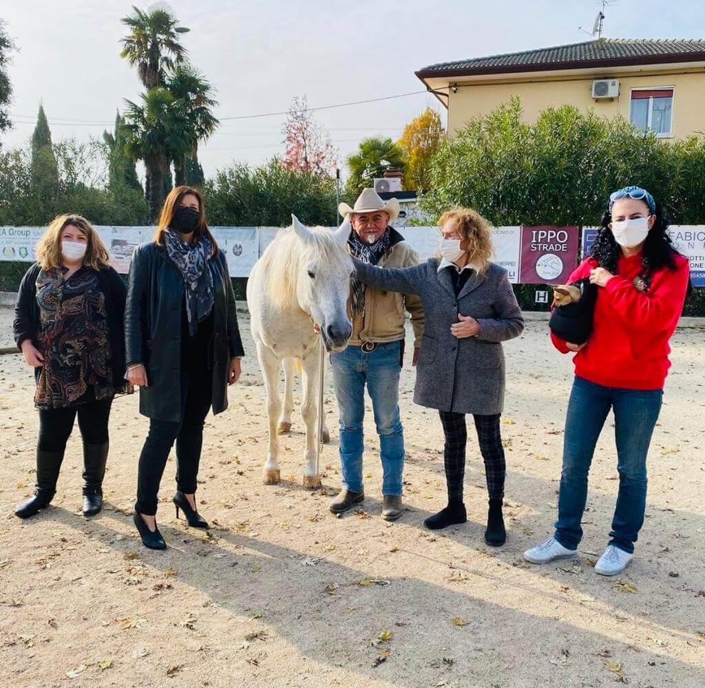 partnership con Country House Horse ASD